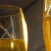 Gold-Rimmed Glasses